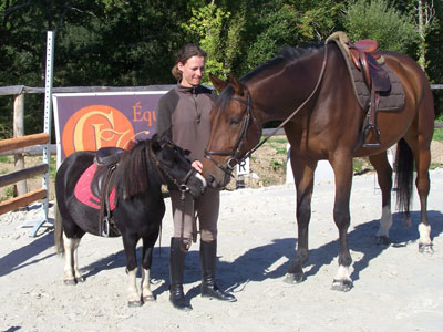 poney et cheval